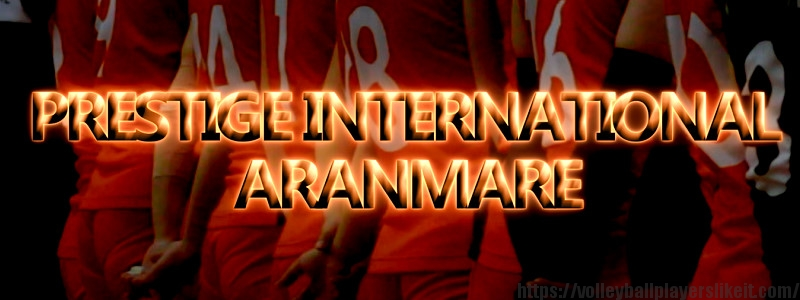 プレステージ・インターナショナル アランマーレ【V・CHALLENGE LEAGUEⅡ PRESTIGE INTERNATIONAL ARANMARE】(Japan Volleyball Professional League)